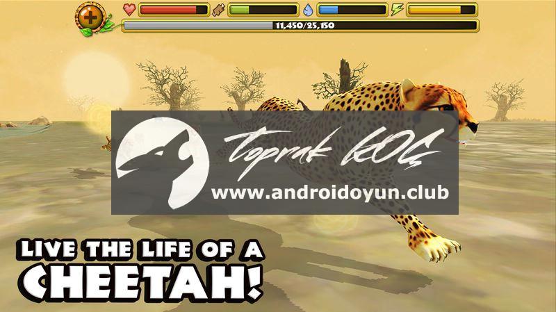 Çita-simülatör 1-1-tam APK